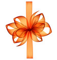 orange bow and ribbon on white background vector image vector image