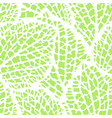 seamless pattern with decorative leaves natural vector image vector image