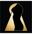 Silhouette of a woman body seen through a key hole vector image vector image