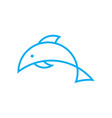 simple dolphin logo vector image vector image