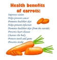 cartoon carrots heals benefits infographics with vector image