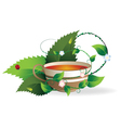 Cup of herbal tea vector image