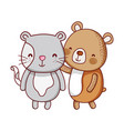 cute animals bear and cat cartoon isolated icon vector image