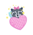 Girl Raccoon Sleeping vector image vector image