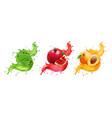 pomegranate apricot aloe splash juice vector image vector image