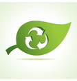 Recycle icon at leaf vector image vector image