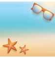 Sandy beach with starfish and sunglasses Summer vector image