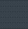 seamless grey pattern with line ornament vector image