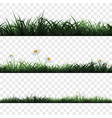 seamless pattern of grass vector image vector image