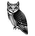 stylish owl side view monochrome vector image vector image