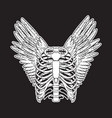 hand drawn of human ribs with wings isolated vector image vector image