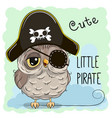 little owl pirate vector image vector image