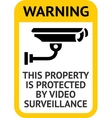 Notice Video Surveillance vector image vector image