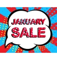 Sale poster with JANUARY SALE text Advertising vector image vector image