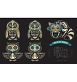 Set with sugar skull penguins owls and raccoon vector image vector image