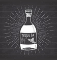 Vintage label hand drawn bottle of tequila