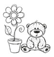 drawn teddy bear with flower vector image