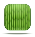 Bamboo Square Icon vector image