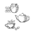 Cup of tea honey jar and teapot sketches vector image