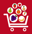 fruits shopping vector image vector image