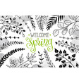 hello spring greeting card vector image vector image