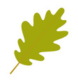 oak leaf icon flat style vector image vector image