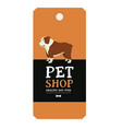 poster pet shop design label english bulldog vector image vector image