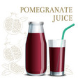 realistic pomegranate juice in a jar and a glass vector image vector image