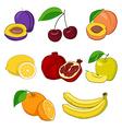 Set of fresh fruits vector image