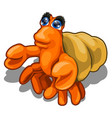 cartoon hermit crab isolated on white background vector image vector image