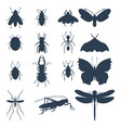 insects silhouette icons isolated wildlife wing vector image