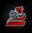 knights offer logo vector image vector image