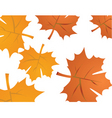 autumn maple vector image vector image