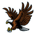 flying bald eagle mascot vector image vector image