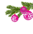 New Year or Christmas background Fir tree branch vector image vector image