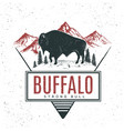 old retro logo with bull buffalo vector image vector image