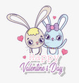 rabbit couple with hearts to valentine day vector image vector image