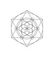 Sacred geometry symbols with triangle hexagon