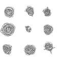 flowers set hand drawn rose vector image