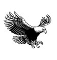 flying eagle spread the wings vector image vector image