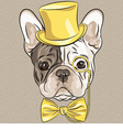 hipster dog French Bulldog breed vector image vector image