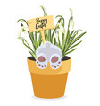 spring happy easter design element bunny in pot vector image vector image
