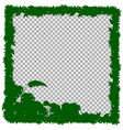 border template with green grass and leaves vector image vector image