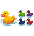 Duck toy in different color vector image