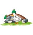 ducks on white background vector image vector image
