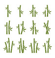 green bamboo set images vector image