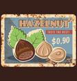 hazelnut nuts metal rusty plate food store price vector image vector image