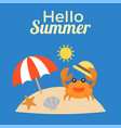 hello summer typography for use as poster vector image