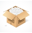 Opened cardboard box isolated on white vector image vector image