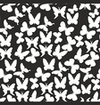 pattern with white butterflies on a black vector image vector image